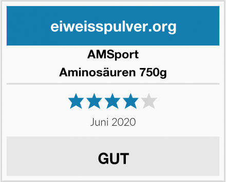 AMSport Aminosäuren 750g Test